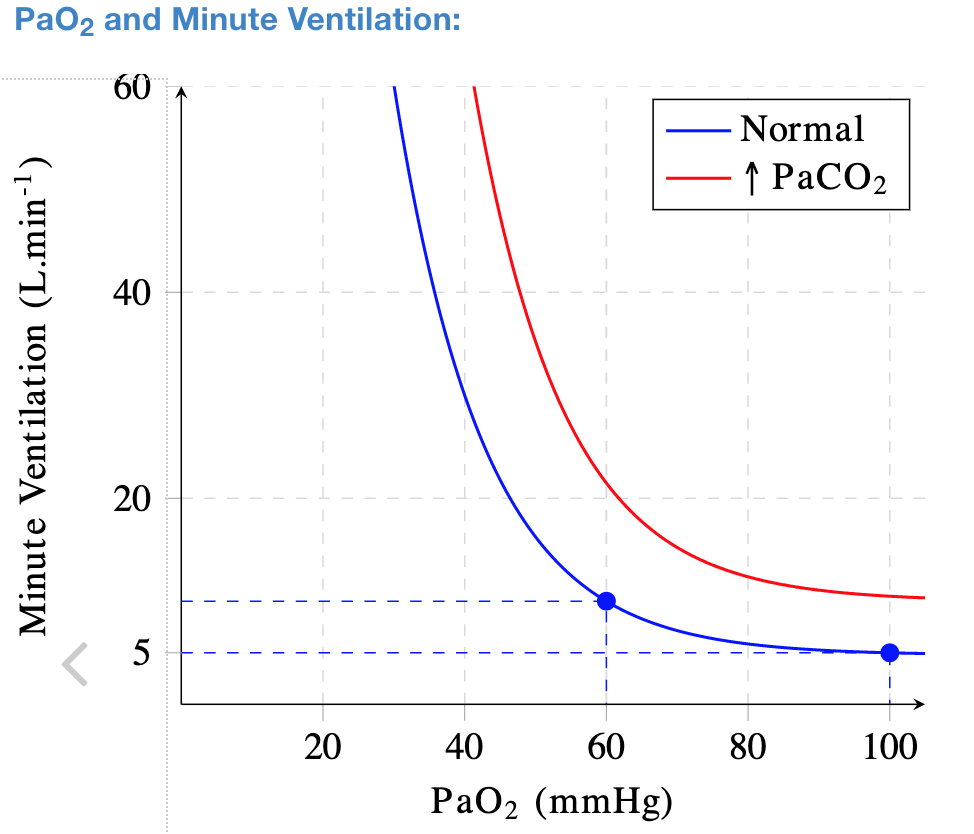 Figure 1. Ventilation response to hypoxemia relative to CO2 levels.